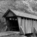 Covered Bridge by Karol Livote