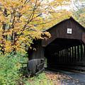 Covered Bridge Number 22 by George Jones