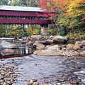 Covered Bridge Over The Swift River  by George Oze
