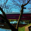Covered Bridge Vivid Afternoon by Ron Valenzia