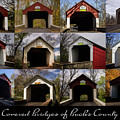 Covered Bridges Of Bucks County by Louise Reeves