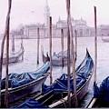 Covered Gondolas by I Joseph
