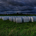 Covered Hay Bales by Dale Kauzlaric