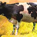 Cow by Anna J Davis