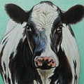 Cow by Lucy Deane