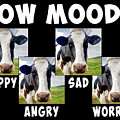 Cow Moods by Dave Lee