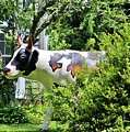 Cow Statue by Cynthia Guinn