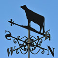 Cow Weathervane. by Stan Pritchard