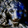 Cowardly Lion by RC DeWinter