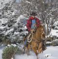 Cowboy Christmas by Carol Walker