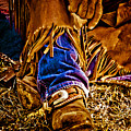 Cowboy Gold by Toni Hopper