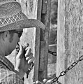 Cowboy Life by Lisa Renee Ludlum