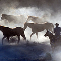 Cowboy Rounding Up Four Horses by JOANNE McCubrey
