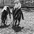 Cowgirl by DJ Tonie