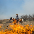 Cowgirl Watching Over Burn by Mike Scheufler