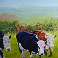 Cows And English Landscape by Mike Jory