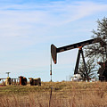 Cows And Oil Well by Susan Vineyard