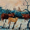 Cows by Pol Ledent