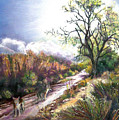 Coyotes In Placerita Canyon by Olga Kaczmar