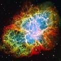 Crab Nebula by Don Hammond