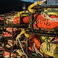 Crab Pots by Robert Potts