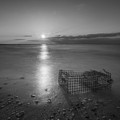 Crab Trap Sunset Le Bw by Michael Ver Sprill