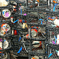 Crab Traps by Larry Keahey