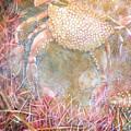 Crabby by Cora Marshall