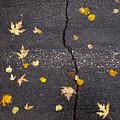 Crack 2 by Lyle Crump
