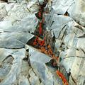 Crack-n-lichen Eastern Sierra Photo by Kim Hawkins Eastern Sierra Gallery
