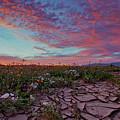 Crack Of Dawn by Sam Antonio Photography