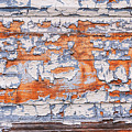 Cracked Wood Paint by Sophie McAulay