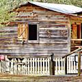 Cracker Cabin by D Hackett