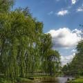 3004 - Crampton Park Bridge In Lapeer IIi by Sheryl Sutter
