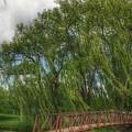 3006 - Crampton Park Bridge In Lapeer I I  by Sheryl Sutter