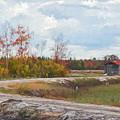 Cranberry Bog by Jim Cook