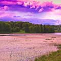 Cranberry Glade Lake by Tammy  McGogney