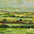 Cranbrook by Allan P Friedlander