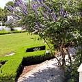 Crane Cottage Garden In Spring by Katherine W Morse