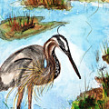 Crane In Florida Swamp by Margaret Fortunato