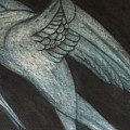Crane by Laurie S Auth