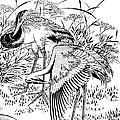 Cranes by Granger