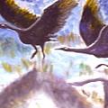 Cranes N Flight by BJ Abrams