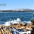 Crashing Acadia Waves 2 by Debbie Stahre