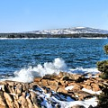 Crashing Acadia Waves by Debbie Stahre