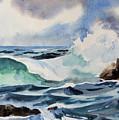 Crashing Wave by Dianna Willman