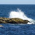 Crashing Waves by Gina Sullivan
