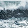 Crashing Waves by Joan Carroll