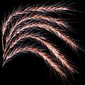 Grass Curve by Joseph Miko