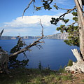 Crater Lake Perspective by Carol Groenen